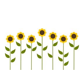 Sunflowers flowers background