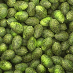 Close up on a large pile of ripe Piel De Sapos