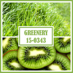 Trendy fashion color concept of the year 2017. Set with greenery color in nature and food with fresh grass and kiwi.