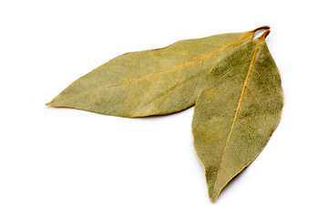 Aromatic bay leaves on white background.