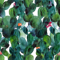 Watercolor cactus tropical garden seamless pattern.