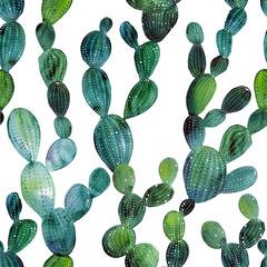 Watercolor cactus tropical garden seamless pattern. Watercolour cactus