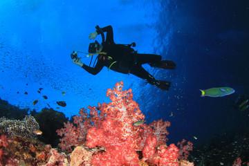 Scuba diver explores underwater coral reef in ocean