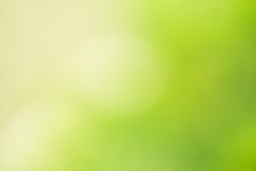 Abstract green blurred natural background