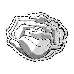 single flower icon image vector illustration design