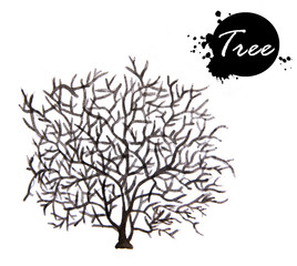 Watercolor tree. Tree without leaves silhouette isolated on white background.
