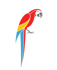 Red macaw. Tropical parrot on white background