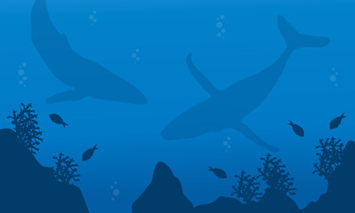 Silhouette of whale collection underwater landscape