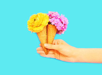 Hand holds two ice cream cone with flowers over blue background