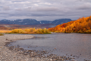 The bright colors of autumn in the mountains and on the river. Polar Urals. Russia.