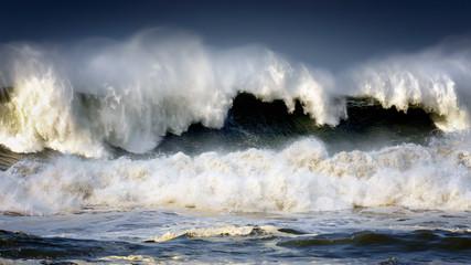 Poster de jardin Eau big wave breaking