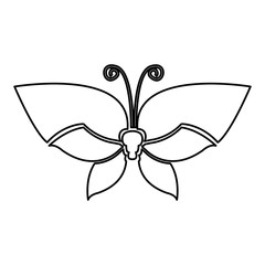 figure butterfly with tricolor wings icon, vector illustraction design