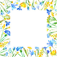 Floral square frame of a wild flowers and herbs on a white background.Wreath of a buttercup,cornflower,bluebell,forget-me-not,lobelia,snowdrop flowers.Watercolor hand drawn illustration.