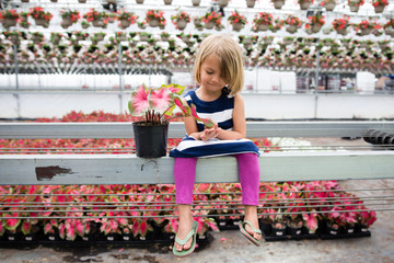 Girl looking at elephant ear plant