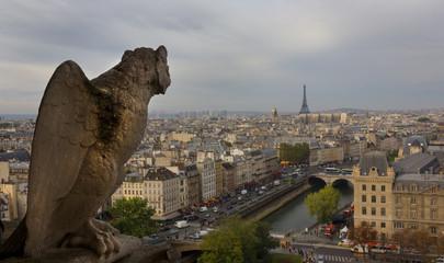 Gargoyle, Notre Dame, Paris, France