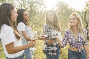 group of people tasting red wine i a vineyard