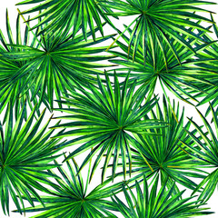 Seamless floral pattern with beautiful watercolor fan palm leaves. Jungle foliage on white background. Textile design.