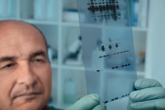 Senior scientist checks results of protein experiment