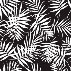 Black and white palm leaves pattern. Trendy background with palm texture.
