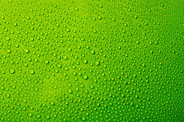 water drops on green background Wall mural