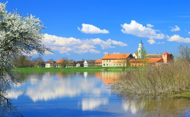 Spring landscape in countryside. Blossom tree on river coast, village and blue sky in background.