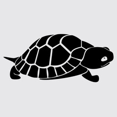Turtle, reptile, black, cartoon