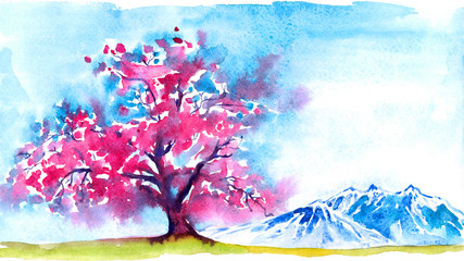 Pink sakura tree blooming in traditional Japanese landscape in mountains, blue sky in early spring morning, hand painted watercolor illustration