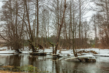 Beautiful scenic winter landscape. A forest river with snowy shores and ice blocks. February thaw