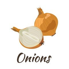 Onions. Flat design. Vector illustration. Ripe vegetable for Your ideas.