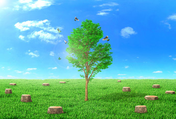 The concept of regeneration. The young tree grows on the field surrounded by stumps. Around the tree flying birds. Religion