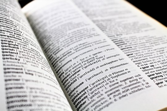 An Image of a lexicon page