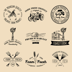 Vector retro set of farm fresh logotypes. Organic products badges. Eco food signs.Sketched agricultural equipment icons.