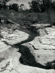 Vintage winding beach stream