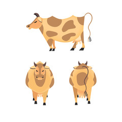Domestic Animal icon set. Dairy cattle sign. Freehand drawn cartoon style. Vector Milk cow symbol. Side view, front, back. Mammals element for poster background. Farming cow with udder, horns, hoofs