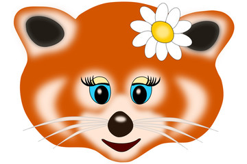 panda rosso femmina