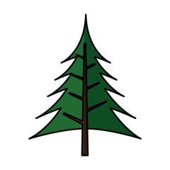 pine tree silhouette icon vector illustration design