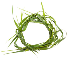 Circle frame from branches and grass