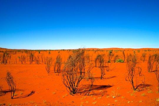 red dirt desert australia outback horizon