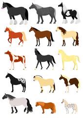 Horse breeds set