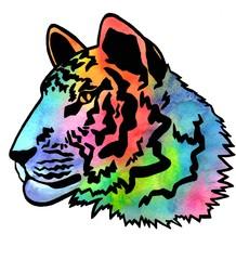 Tiger's head. Color watercolor illustration