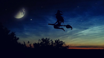 Halloween. The witch flying on the broom against the background of the night sky.
