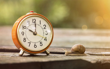 Retro alarm clock and a slow snail - time concept