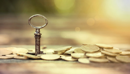 Business success - website banner of key and money coins