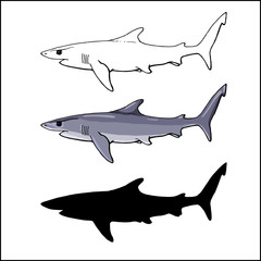 blue shark in 3 versions