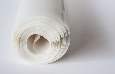 A shallow depth of field closeup photo of a white paper roll on a light background