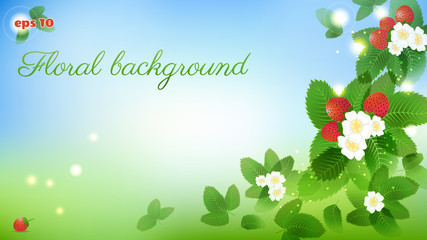 Floral vector background with strawberries. Standard size for a wide screen.