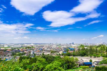 住宅街を見渡す新緑の丘