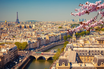 Fotobehang Parijs Aerial view of Paris at springtime, France