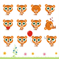 Big set cute little tiger. Collection isolated cartoon tiger in different poses.