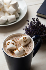 Poster Chocolate hot cocoa with marshmallow